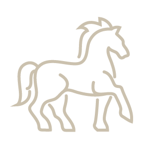 Equestrian Community Aiken